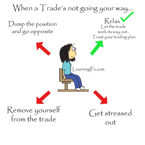 How i become a successful trader in forex